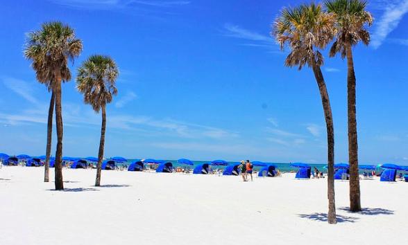 4 ting å gjøre på Clearwater Beach