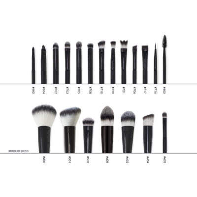 Brush Set 20 pcs