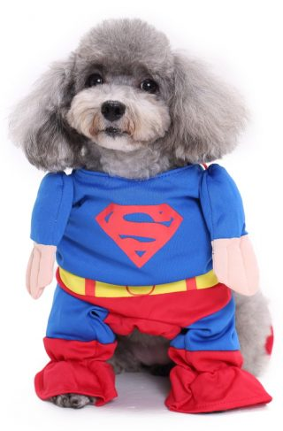 Kostyme til hund: Supermann