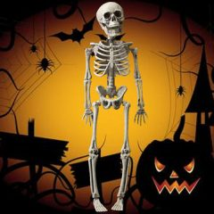 Halloween Skeleton Skull Science Party Decor Toy