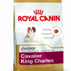 Royal Canin Cavalier King Charles Puppy