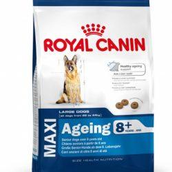 Royal Canin Maxi Ageing 8+, 15kg