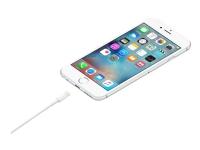 Apple - Lightning-kabel - Lightning (hann) til USB (hann) - 50 cm - for iPad/iPhone/iPod (Lightning)