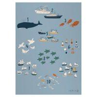 Sebra 50 x 70 Seven Seas Plakat One Size