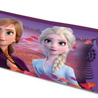 Disney Frozen 2 Pennal