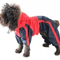 God regndress for hund - parkdress