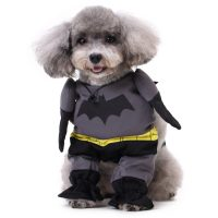 Kostyme til hund: Batman