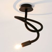Taklampe Lover 1 lyskilde, svart