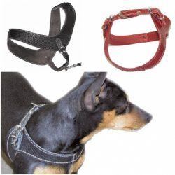 Boomerang myk skinnsele til små hunder