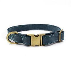 Denimblått skinnhalsbånd til hund