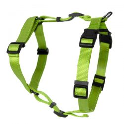 Grønn fleksibel H-sele til hund