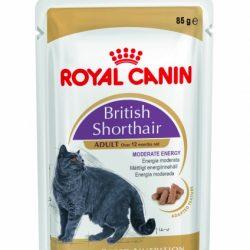 Royal Canin British Shorthair WET 12 x 85gr