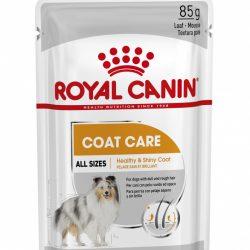 Royal Canin Coat Care Wet, 12 x 85g