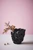 CANDIS vase