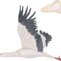 That's Mine Wallsticker Stork Small, White