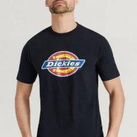 Dickies T-Shirt Icon Logo Tee Svart