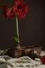 Blomsterkasse Carl lengde 40 cm