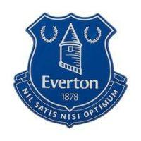 Everton Kjøleskapsmagnet 3D - Blå/Hvit