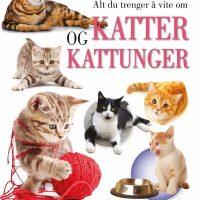 Gøy Med Fakta! Alt Du Trenger Å Vite Om Katter Og Kattunger